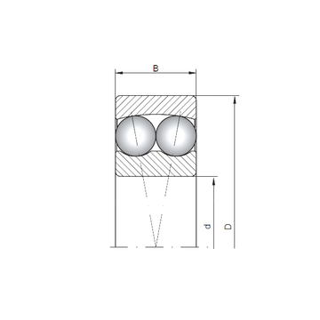 1310 ISO Self Aligning Ball Bearings