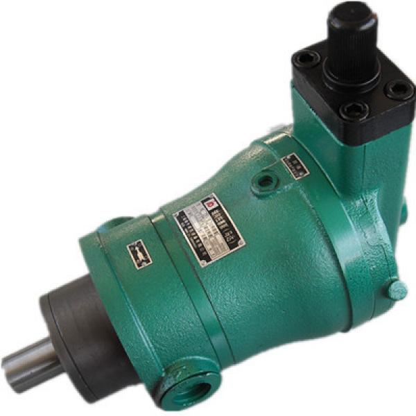 63YCY14-1B high pressure hydraulic axial piston Pump #1 image