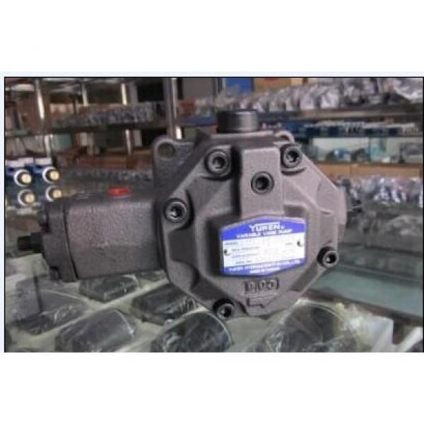 AR22-FR01C-20T, Japan Yuken piston pump AR22 series #2 image