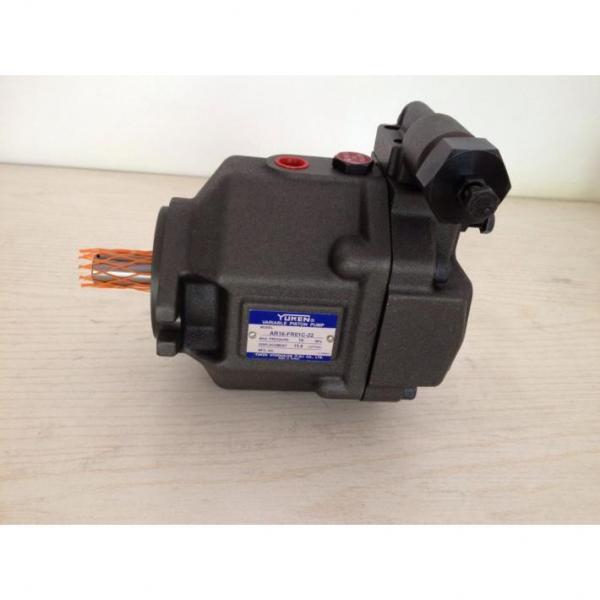 AR22-FR01C-20T, Japan Yuken piston pump AR22 series #3 image