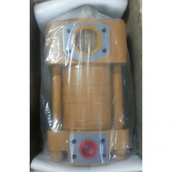 CQT63-80FV-S1376-A Japan Sumitomo Gear Pump #3 image